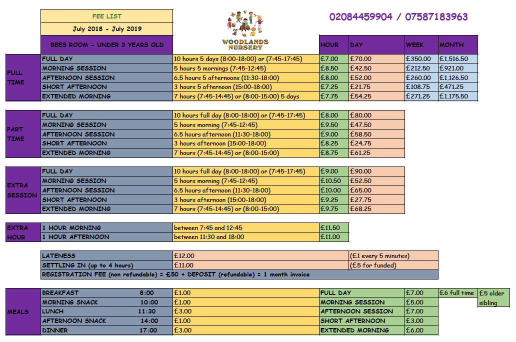 FEES 2018 -2019 BEES - UNDER 2-1 UNDER 3 - BEES